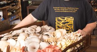 Kansas City's Food Stars – ThisIsKC